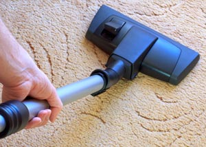 A carpet cleaning professional working in Gildford