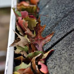 Clogged gutters filled with fall leaves  in Shelby